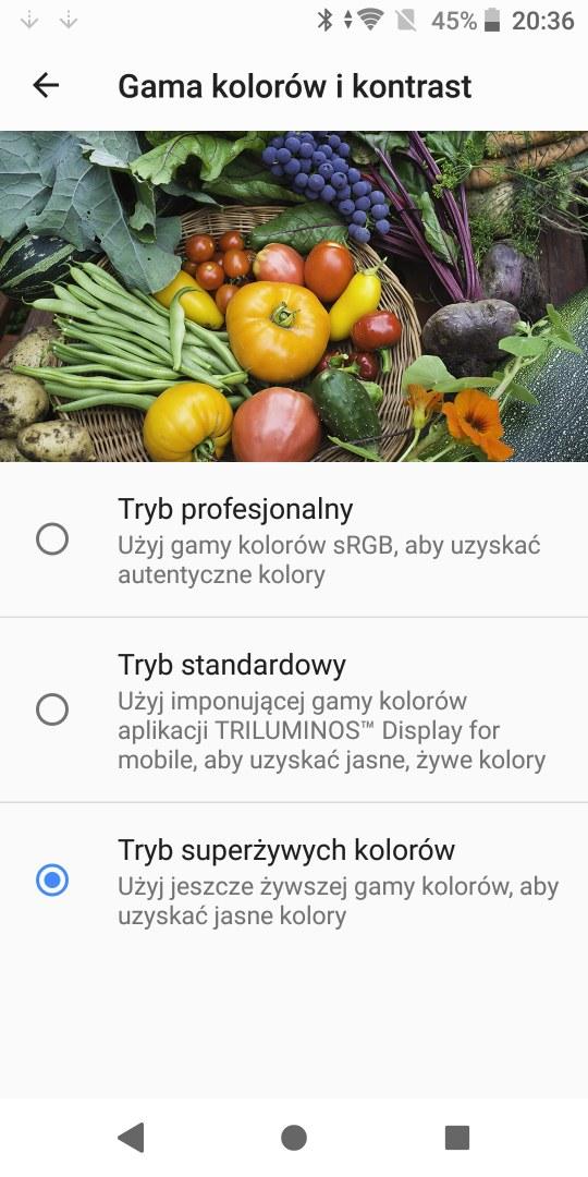 Ustawienia ekranu w Sony Xperii XZ2 - 90sekund.pl